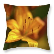Golden Gazer Throw Pillow