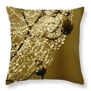 Golden Globes Throw Pillow