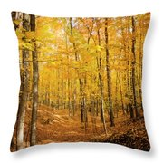 Golden Glory Throw Pillow
