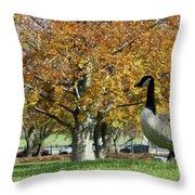 Golden Goose Throw Pillow
