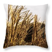 Golden Grass Flowers Throw Pillow