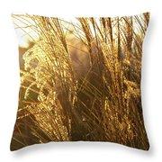 Golden Grass In Sunset Throw Pillow
