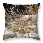 Golden Grasses In Sun And Snow Throw Pillow
