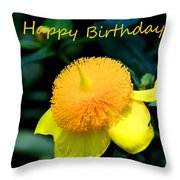 Golden Guinea Happy Birthday Throw Pillow
