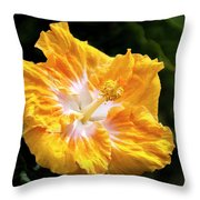 Golden Hibiscus - Hawaii Throw Pillow