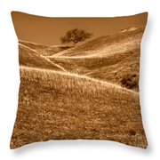 Golden Hills Of California Photograph Throw Pillow