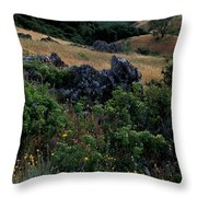 Golden Hills Of Summer Throw Pillow by Kathy Yates