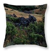 Golden Hills Of Summer Throw Pillow