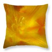 Golden Hour Flower Throw Pillow