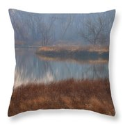 Golden In The Morning Throw Pillow