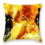 Golden Kimono Throw Pillow