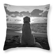 Golden Labrador Watching Sunset Throw Pillow