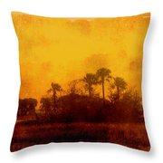 Golden Land Throw Pillow
