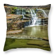 Golden Leaves And Mossy Tiers Of Enfield Glen Waterfall Throw Pillow