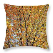Golden Leaves - Oil Paint Throw Pillow