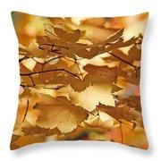 Golden Light Autumn Maple Leaves Throw Pillow
