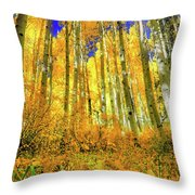 Golden Light Of The Aspens - Colorful Colorado - Aspen Trees Throw Pillow