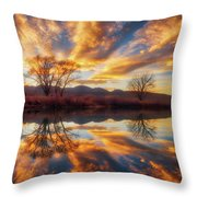 Golden Light On The Pond Throw Pillow