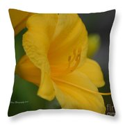 Golden Lily 18-2 Throw Pillow