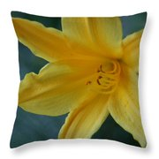 Golden Lily 2 Throw Pillow