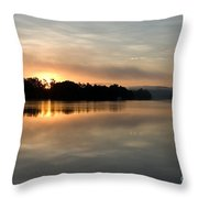 Golden Liquid Dawn Throw Pillow