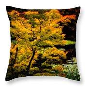 Golden Maple Throw Pillow