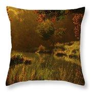 Golden Throw Pillow by Melissa Krauss