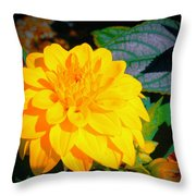 Golden Moment In The Morning Throw Pillow