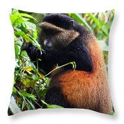 Golden Monkey II Throw Pillow