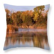 Golden Morning Shoreline Pano Throw Pillow