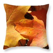 Golden Orange Throw Pillow