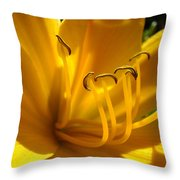Golden Orange Lily Art Print Lilies Flowers Baslee Troutman Throw Pillow