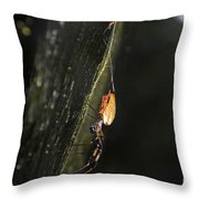 Golden Orb Spider Throw Pillow