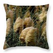 Golden Pampas In The Wind Throw Pillow