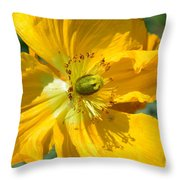 Golden Poppy Expose Throw Pillow