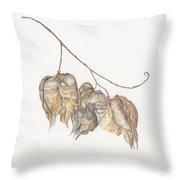 Golden Rain Tree Pods Throw Pillow