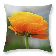 Golden Ranunculus Throw Pillow