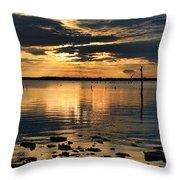 Golden Rays At Sunset Throw Pillow