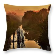 Golden Refelctions Throw Pillow