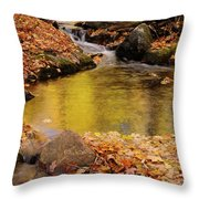Golden Reflections In A Stream On The Blanchet Trail Gatineau Pa Throw Pillow