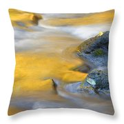 Golden Refuge Throw Pillow