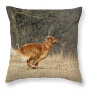 Golden Retriever 2 Throw Pillow
