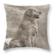 Golden Retriever Dog Sepia Throw Pillow by Jennie Marie Schell