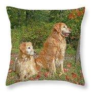 Golden Retriever Dogs In Autumn Throw Pillow