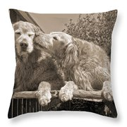 Golden Retriever Dogs The Kiss Sepia Throw Pillow