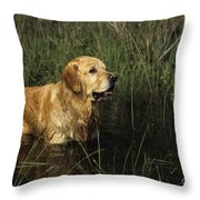 Golden Retriever Throw Pillow