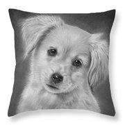 Golden Retriever Puppy Drawing Throw Pillow
