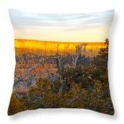 Golden Ridge Throw Pillow