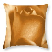 Golden Rose Bud Throw Pillow