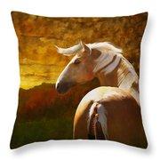 Golden Scout Throw Pillow
